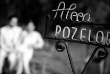 Weddings by Alin Popescu