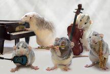 A .VM- 46. Rongeurs / Tous les animaux rongeurs, c'est-à-dire qui ont 2 incisives qui poussent sans arrêt et qui obligent l'animal à ronger. Souris, rat, écureuil, tamias, marmotte, castor, lapin, lièvre, et autres. / by Monique Trépanier
