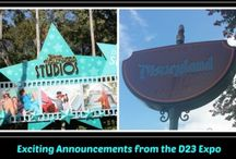 Walt Disney World News / Walt Disney World News. Information to help you plan your next Walt Disney World Vacation.