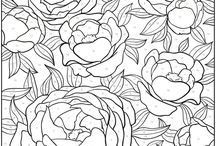 Coloring Pages | Adults