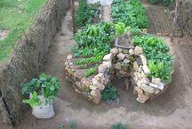 Gardening Ideas / by Randi Roy Craig