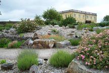 Rockeries sloping gardens