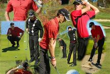 Golf Collages / Golfers I photographed