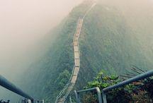 Nature / trip