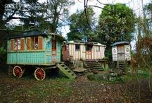 Gypsy habitats