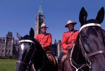 My Canada / by Tammy Simpson