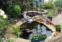 Jezírka a voda v zahradě