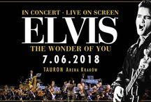 Nadchodzące koncerty / upcoming concerts: