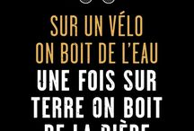 Citations proverbes