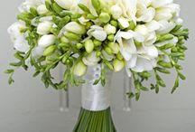 Wedding / Idee colori profumi per il tuo evento speciale