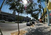 Santa Monica Boulevard  / by West Hollywood