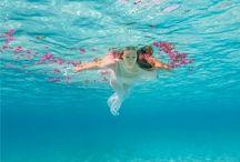 Underwater Photography / by Allie Reina