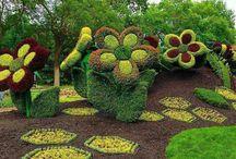 Jardins Esculpido em topiaria