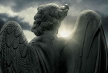 {angels} / by Jeff Faria