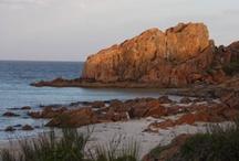 Western Australian discoveries