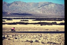 Ride to Cure Diabetes / by JDRF Northern Nevada