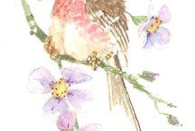 Decoupage,bird,owl,peacock,pic,illustration,transfer, french,vintage
