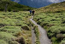 Places to Hike / Hiking spots around the world.  / by San Diego Mesa College Study Abroad