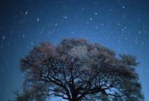 Starscape / by Ei-Ichi Osawa