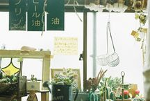 Plants and interiors