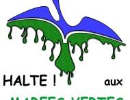 Les images du Druide de bretagne-web.fr