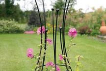 Garden Tidbits / by Marie Boyes