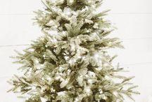 Christmas Mornings with Treetopia