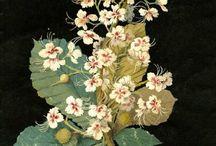 Botanical / by Yeh Kome