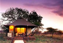 Safari Getaways