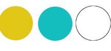 Website Color Palettes