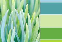 Four Seasons: Spring