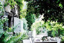 *Garden*