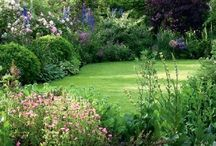ogródek ogród
