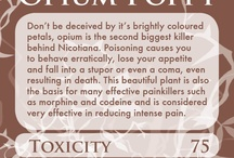 Wicca Poison