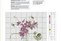 violette punto croce