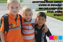 Adoption Home Studies / MLJ Adoptions can provide home study services for domestic adoption, stepparent, grandparent or relative adoption, embryo adoption for Indiana residents. MLJ Adoptions can also prepare Hague-compliant home studies for Indiana residents interested in pursuing international adoption through another placing agency.