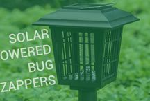 Best ways how to control mosquitoes