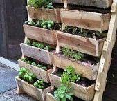ideas plantas terraza