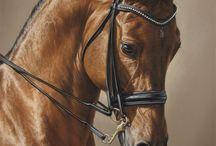 mooie paarden tekeningen