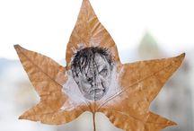 Sketch on Leaf
