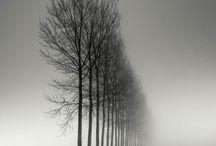 Best Black&white Photo's