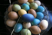 Easter / by Sheilla Salinger