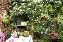 Ładny ogródek