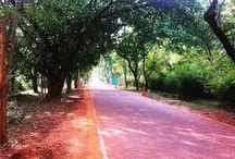 We Love Auroville