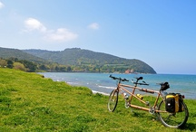 Cycling in Tuscany / We organise cycling tours through the Tuscan hills for active moms who stay at our retreat.