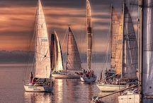 veleiros d' amor
