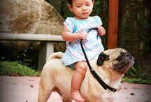 děti a zvířátka