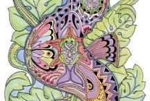 tegninger av Sue Coccia