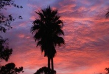 South Florida Sunsets / There are plenty of gorgeous sunsets to take in and enjoy. Here are some photos (with lots of red, pinks, and oranges) of tropical sunsets and evening clouds in South Florida.