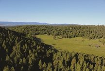 Winter 2013 Vistas / From #timberland retreats and rugged #ranches to historic #estates and mountain getaways, the editors of The Land Report present some of the top #properties currently on the market.  / by The Land Report Magazine